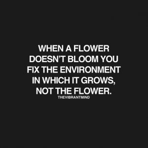 fix enviroment quote