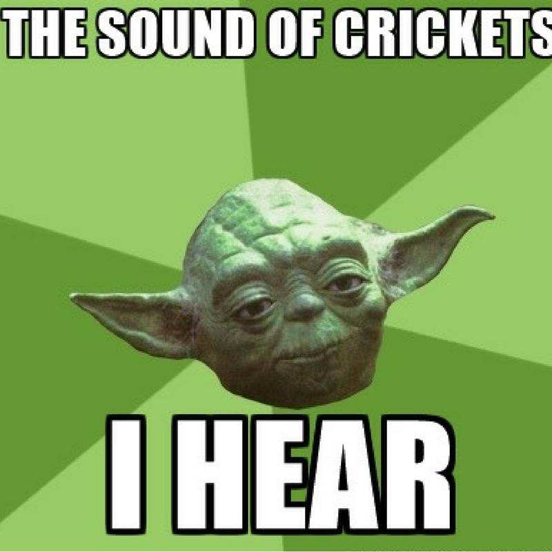 Yoda crickets