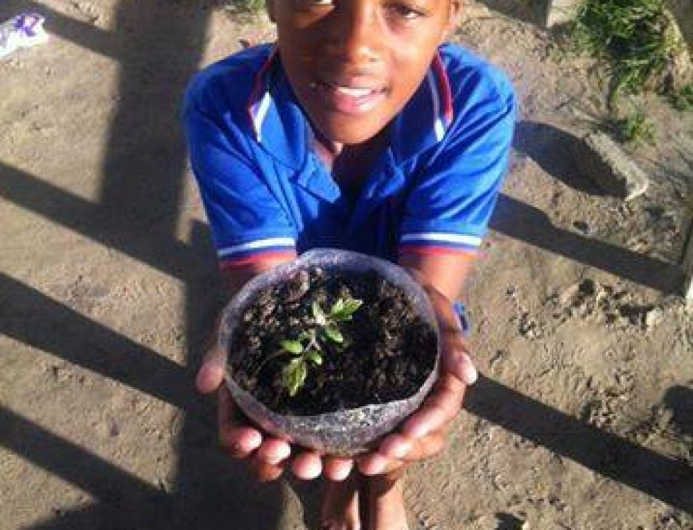Changing Cape Town one garden at a time: Meet Ujamaa