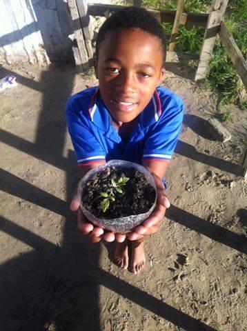 ujamaa collective guerrilla gardening