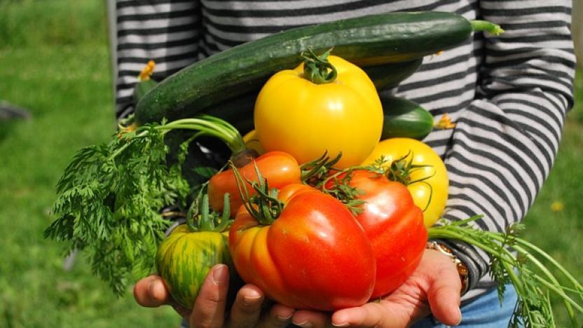 Creating Eden Vegetables