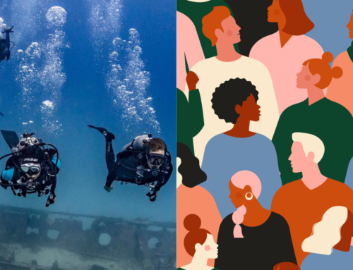 Out of the Fishbowl Episode II: Diverse vs Divers